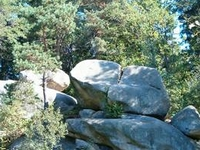 Prządki Nature Reserve