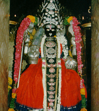 Punnai Nallur Marriamman Temple