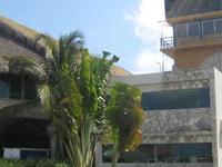 Punta Cana Intl. Airport