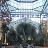 Palm House Botanic Gardens Adelaide