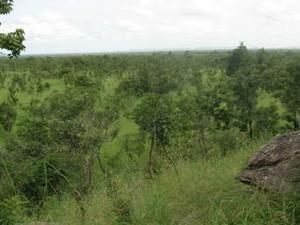 Pendjari National Park