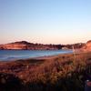 Mona Vale Beach Facing South