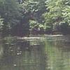 Quinnipiac River State Park