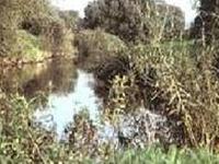 Raab Nature Preserve