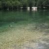 Rackee - Jasna Lake - Julian Alps