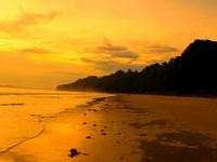 Relish Andaman Islands Treasure Trove