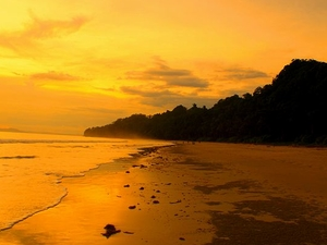 Relish Andaman Islands Treasure Trove Photos