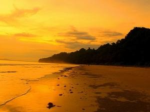 Disfrute Andaman Islands Treasure Trove