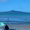 Rangitoto From Mission Bay - Auckland NZ