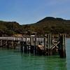 Rangitoto Island Jetty NZ