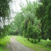 Ratanmahal Sloth Bear Sanctuary