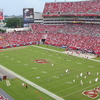 Raymond James Stadium Field