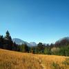 Red Eagle Lake Trail At Glacier - Montana - USA