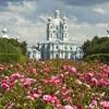 Resurrection Cathedral Of Resurrection Novodevichiy Smolniy Cloister - St. Petersburg