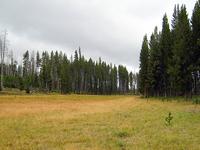 Riddle Lake Trail