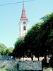 Roman Catholic Church-Tapolca