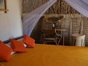 Lake Turkana Air Safari Photos