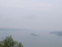 Ropar Wetland