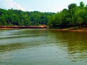 Rough River