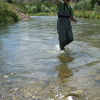 Fly Fisherman On Ruby River