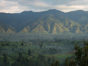 Rwenzori Mountains National Park