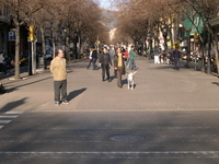 Rambla de Catalunya