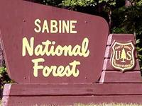 Sabine National Forest