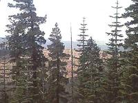 Sagehen Hills
