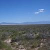 Saguache Creek Colorado