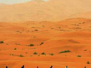 Tour from Marrakech to the Desert Photos