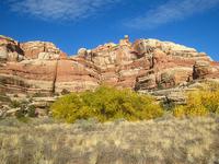 Salt Creek Canyon Trail