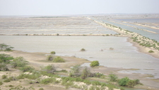 Salt Pans West Of PCWBS
