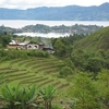 Samosir Island Terraces - Sumatra
