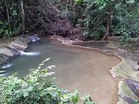 Em Em Manora Forest Park