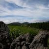 Sangumburi Crater At Jeju Do