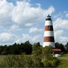 Sapelo Island Reserve And Reynolds Mansion