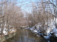 Scajaquada Creek