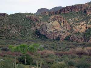 Saguaro Lake Ranch