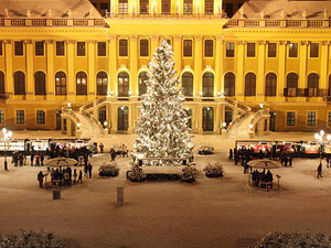 Schonbrunn Palace Evening: Palace Tour, Dinner and Concert