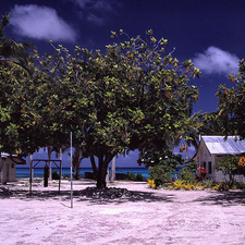 School On Funafuti Atoll - Tuvalu