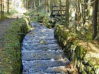 Schwarzenberg Logging Canal