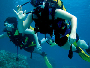 Scuba diving Photos
