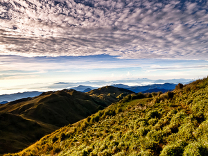 Mt. Pulag Climb Packages Photos