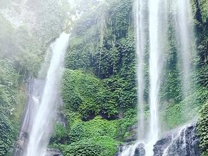 Sekumpul Jungle Trekking