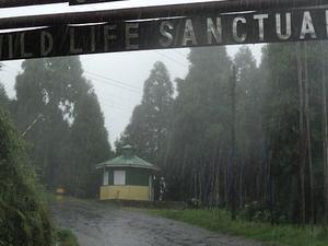 Senchal Wildlife Sanctuary