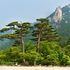 Seoraksan National Park - South Korea