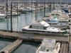 Seward  Docks