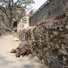Sewri Fort Wall
