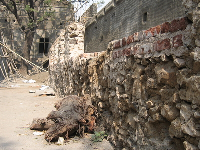 Sewri Fort Wall
