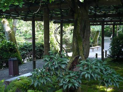 Shed-Ryoan Ji Rock Garden